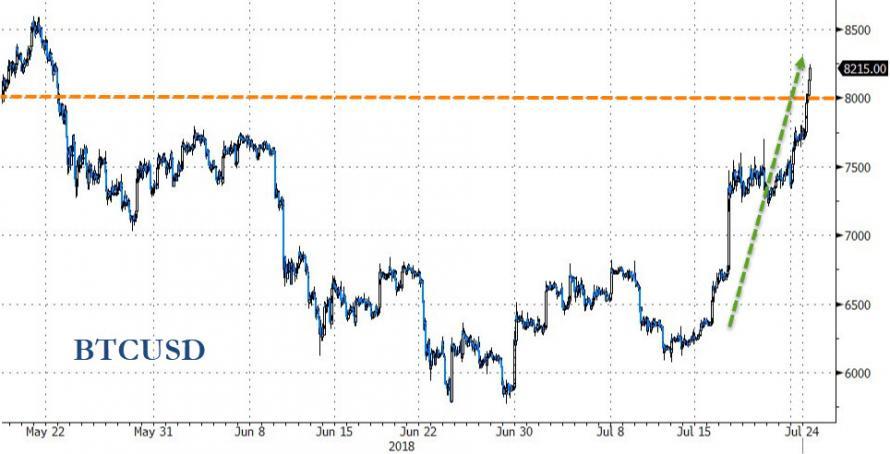 496d01626 Em menos de um mês o Bitcoin caiu até $5.900 e agora subiu até $8.200. Pra  quem gosta de apostar e de fortes emoções.